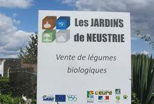 jardins-de-neustrie-val-de-reuil / les jardins de Neustrie, produits Bio