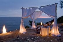 Eco Honeymoons / Some of our favorite places in the world to escape after the wedding ceremony that are eco-friendly, sustainable or have the environment in mind.