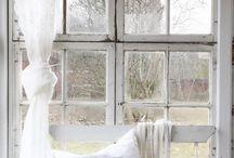 windows doors and shutters