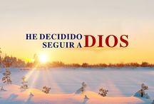 Serie de Vídeos Musicales del Reino / #IglesiadeDiosTodopoderoso #RelámpagoOriental #Evangelio #ElAmorDeDios #CanciónDeLaIglesia #CanciónCristiana #AlabanzaDeAdoracion