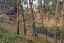 Camping-Friluftsliv.2.