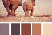 Colour my world / by Tiffany Harvey