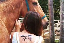 Tatto Cavalo