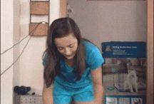 vídeos chistosos