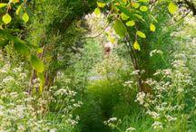 přírodní zahrada