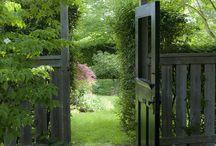 Garden/ Yard Design Ideas