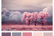 Wandfarbe Farbtöne