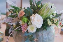 Karoo Inspired Wedding / A Duck Egg Blue Karoo inspired wedding, with homegrown pumpkins, Kudu Horns, Proteas and Garden Roses