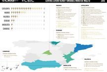 MAPS / ICMAB MAPS