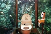 Servizi acquatici / In Giappone bellissimo il w.c. immerso totalmente in un acquario, per chi coraggiosamente vuole provare questa esperienza circondato da pesci variopinti.
