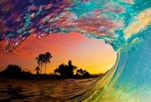 Ezra surfing