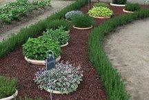 Konténeres kertészkedés