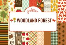 Woodland Forest / Delight in the warm glow of autumn with the cozy colors of Woodland Forest by Pebbles Inc. Graphics of cute critters, bright pumpkins and colorful leaves are showcased in a palette of burnt orange, mustard yellow, and deep red. Colorful stickers, dimensional rubber shapes, chipboard ephemera and wood veneer are the perfect additions to adorn your creative projects. / by Pebbles Inc