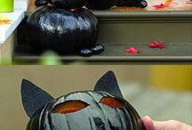 zucche di halloween