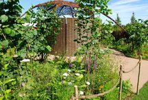 RHS Hampton Court show gardens