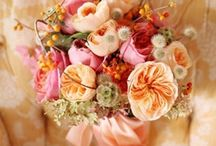 Wedding fleurs / by Meg Dodini with Succulents & Saffron