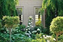 Balkón a záhrada