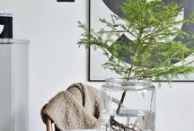 Modern Xmas / Decor / by Tracey Ho Lung
