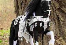 Kone které chci