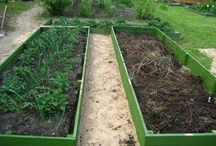 Сад---огород.