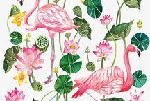 estampa flamingos