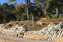 Rock Gardening in the Southeastern US