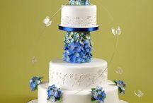 Cake Decorating Tutorials