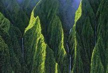 Hawaii / 0
