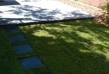 Paving & Turf Project Maroubra, Sydney NSW Australia / 400sq Concrete Pavers & new Sir walter turf