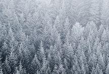 Snow / by randy fx