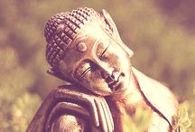 Wisdom & Guidance