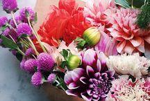 Flores / Decoraciones florales con encanto y personalidad