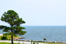 Water View Living in Rehoboth Beach, Delaware