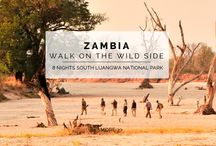 Experience - Walk on the Wild Side / Get up close and personal with the wildlife of Zambia from your own two feet. This experience is designed with adventure and exploration in mind, walking from camp to camp and discovering natures wonders on the way.