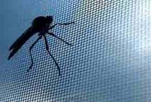 Moskitiery / Window screen / www.presiana.pl www.sklep.presiana.pl