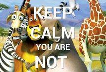 Pysy rauhallisena ...