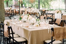 Winery wedding / by Vivian Ngo