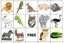 Tema djur