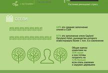 Внутреннее озеленение