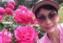 Rose Garden / Seattle
