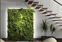De Interior. / Jardines Verticales en ambientes.