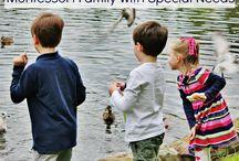 Montessori Homeschooling / A glimpse into what Montessori homeschooling looks like in various homes.