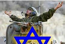 Israël Défense force
