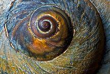 cirkels en spiralen