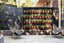 Vertikális kertek, zöldfalak