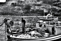tekneler - balıkçı