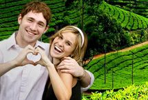 Honeymoon Packages in Kerala / Celebrate honeymoon in Kerala with best offers