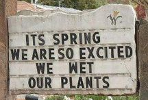 Signs: Funny, Really Funny, n Classic...