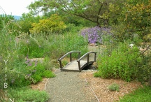 Rustic Landscape Design / Inspiration and ideas for Rustic landscape design. Go to http://www.landscapingnetwork.com/garden-styles/Rustic-Landscape-DEsign.pdf for a printable, hi-res inspiration guide to this style.
