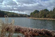 Regiones y zonas de pesca / Clic & Fish: regiones y zonas de pesca en ríos y embalses en España. Más información en https://clicandfish.com/zonas / by CLIC & FISH